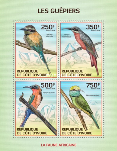 [African Fauna - Birds, type ]