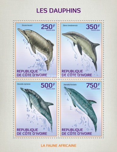 [African Fauna - Dolphins, type ]