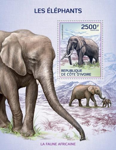 [African Fauna - Elephants, type ]