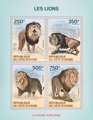 [African Fauna - Lions, Typ ]