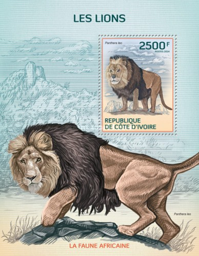 [African Fauna - Lions, type ]