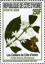 [Coffee Plants, type ATF]
