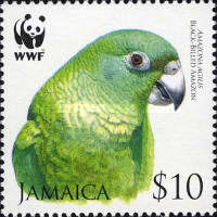 [World Wildlife Fund - Black Billed Amazon, type AOJ]