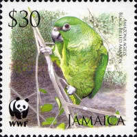 [World Wildlife Fund - Black Billed Amazon, type AOK]