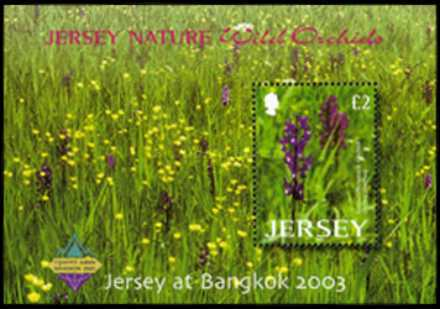 [Jersey Nature - Wild Orchids, Typ ]