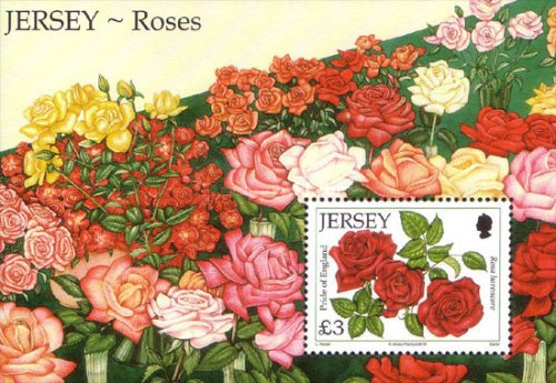 [The 15th Anniversary of the Jersey Rose Festival, Typ ]