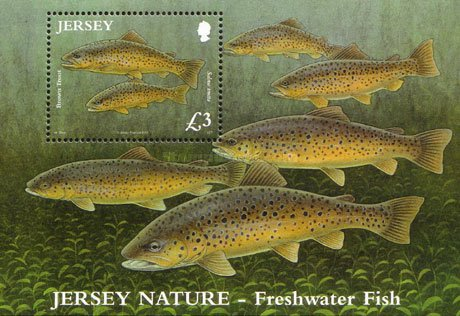 [Fish - The 50th Anniversary of the Jersey Freshwater Angling Association, type ]