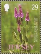 [Jersey Nature - Wild Orchids, Typ ANJ]