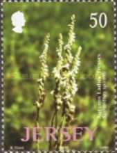 [Jersey Nature - Wild Orchids, Typ ANM]