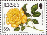 [The 15th Anniversary of the Jersey Festival Rose Show, Typ BCS]