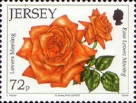 [The 15th Anniversary of the Jersey Festival Rose Show, type BCW]