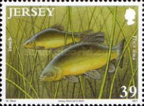 [Fish - The 50th Anniversary of the Jersey Freshwater Angling Association, type BDM]