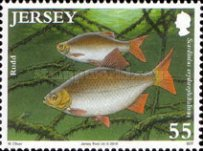[Fish - The 50th Anniversary of the Jersey Freshwater Angling Association, type BDO]