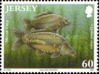 [Fish - The 50th Anniversary of the Jersey Freshwater Angling Association, type BDP]