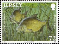 [Fish - The 50th Anniversary of the Jersey Freshwater Angling Association, type BDQ]