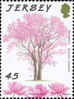 [The 75th Anniversary of Jersey Trees for Life, type BIB]