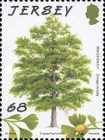 [The 75th Anniversary of Jersey Trees for Life, type BIE]