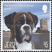 [Dogs - The Kennel Club of Jersey, type BKG]
