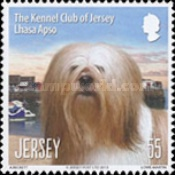 [Dogs - The Kennel Club of Jersey, type BKH]