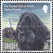 [Dogs - The Kennel Club of Jersey, type BKL]