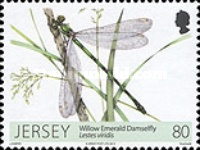 [Dragonflies & Damselflies, type BLV]