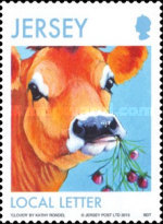 [Jersey Cows, type BMJ]