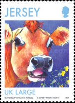 [Jersey Cows, type BMO]
