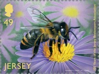 [The 100th Anniversary of the Jersey Beekeepers Association, Typ CAY]