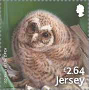 [The 150th Anniversary of the JSPCA - Jersey Society for Prevention of Cruelty to Animals, Typ CDK]
