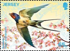 [EUROPA Stamps - National Birds, Typ CGA]