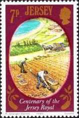 [Agriculture - The 100th Anniversary of The Jersey Royal Potato, type GF]