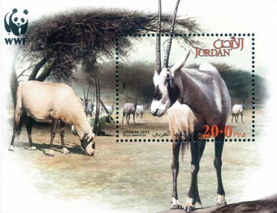 [Global Conservation - Oryx, Typ ]