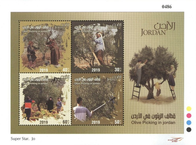 [Olive Picking In Jordan, type ]