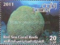 [Marine Life - Red Sea Coral Reefs, type BAH]