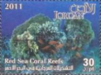 [Marine Life - Red Sea Coral Reefs, type BAI]