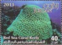 [Marine Life - Red Sea Coral Reefs, type BAJ]