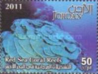 [Marine Life - Red Sea Coral Reefs, type BAK]