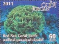 [Marine Life - Red Sea Coral Reefs, type BAL]