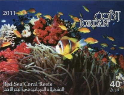 [Marine Life - Red Sea Coral Reefs, type BAM]