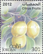 [Citrus Fruits, Typ BCW]