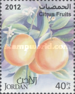 [Citrus Fruits, Typ BCX]