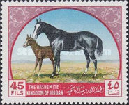[Arab Horses, type IN]