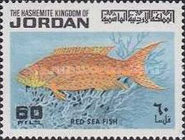 [Red Sea Fish, type PS]