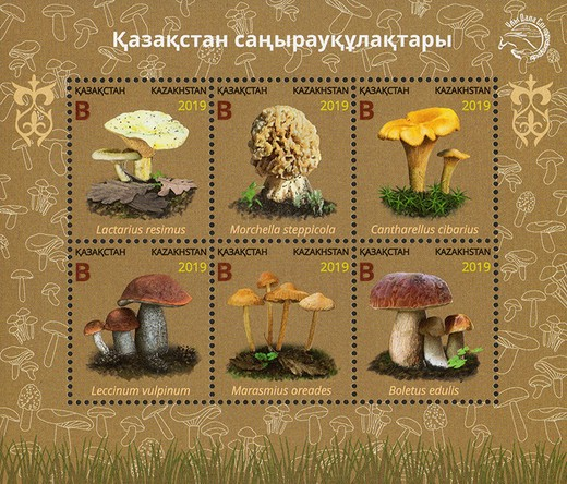 [Mushrooms, Typ ]