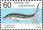 [Definitives - Fish of Kazakhstan, type ANR]