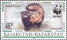 [The Marbled Polecat, Typ DY]