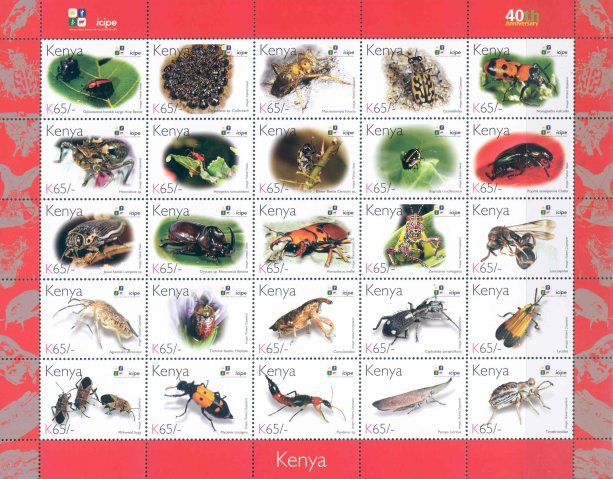 [Beetles - The 40th Anniversary of ICIPE - International Centre of Insect Physiology and Ecology, Typ ]