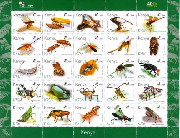 [Insects - The 40th Anniversary of ICIPE - International Centre of Insect Physiology and Ecology, Typ ]