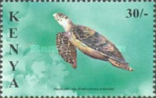 [Marine Turtles, type ABJ]