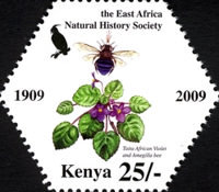 [East Africa Natural History Society, type AEW]